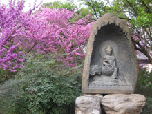 Buddha Statue with Tree Blossoms