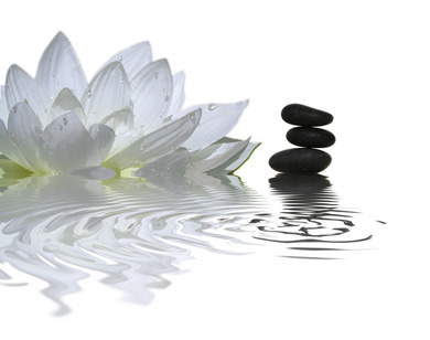 Lotus and Balancing Rocks